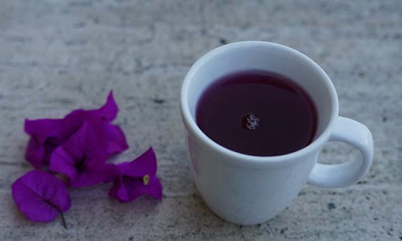 Bougainvillea tea against cough 027 copy
