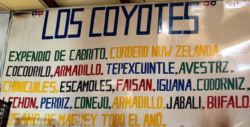 Eating insects at San Juan Market 008 copy
