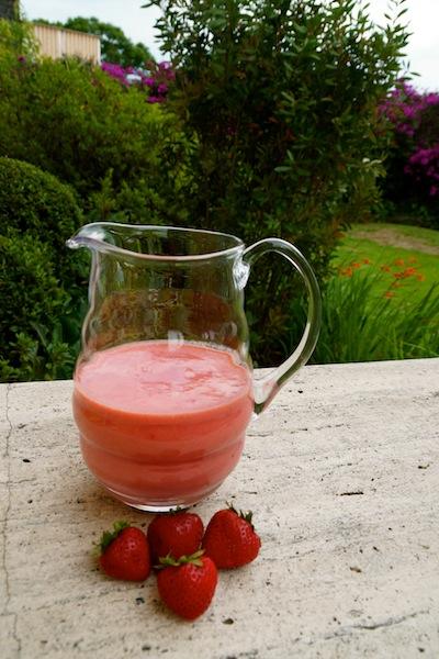 Cardamom Biscotti & Strawberry Mint Smoothie DSC07130 copy