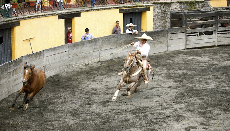 Charreria, the art of Mexican Rodeo DSC09135 copy
