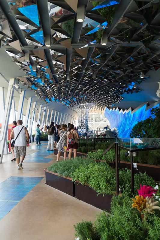 DSC05173 Tasting the World at Expo Milano 2015 III