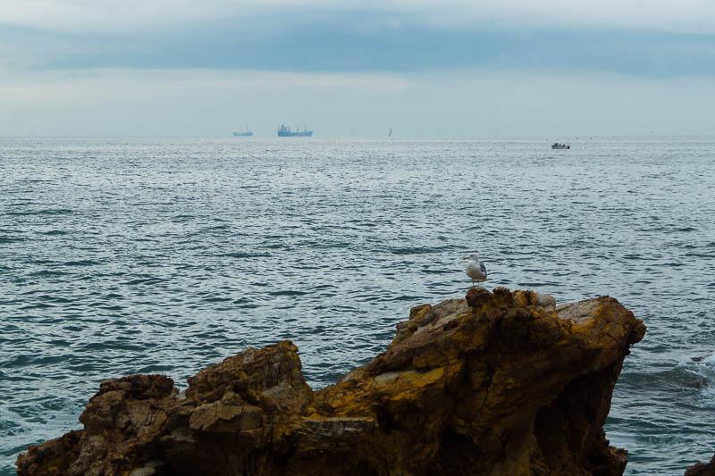 DSC00847 Sea Wanderlust in Portugal
