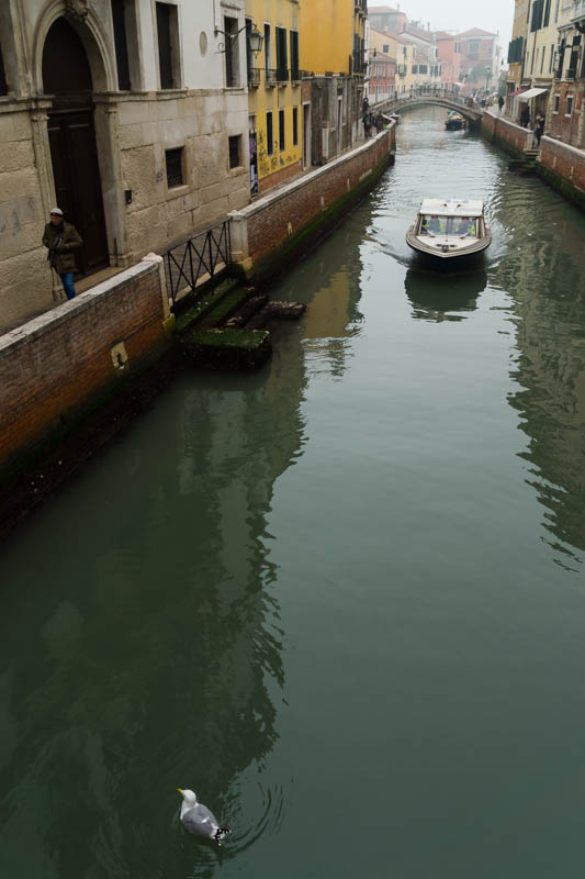 DSC02353 Exploring Venice in Winter