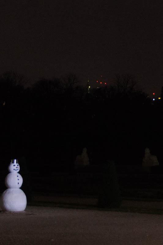 DSC02801 Winter Landscapes in Vienna