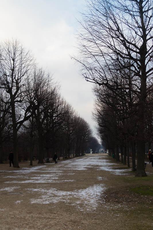 DSC03159 Winter Landscapes in Vienna