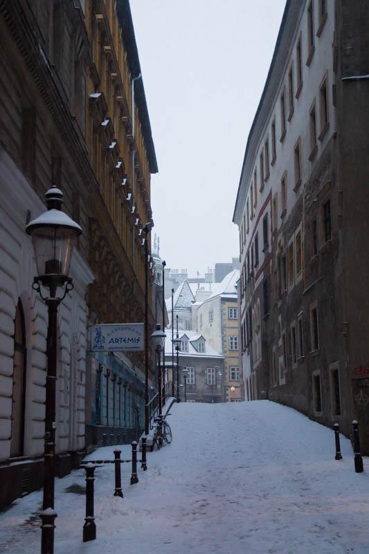 DSC03568 Winter Landscapes in Vienna