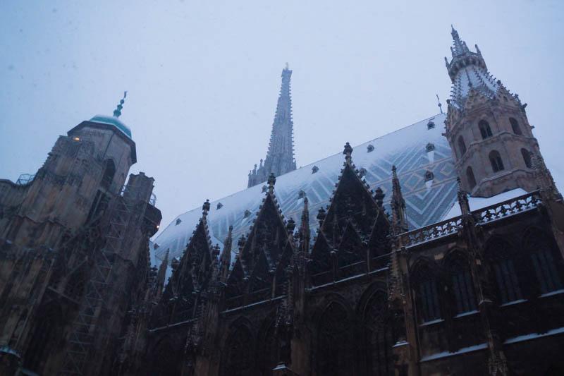 DSC03583 Winter Landscapes in Vienna