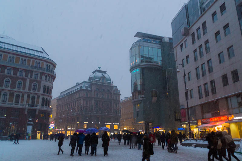 DSC03590 Winter Landscapes in Vienna
