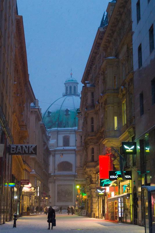 DSC03595 Winter Landscapes in Vienna