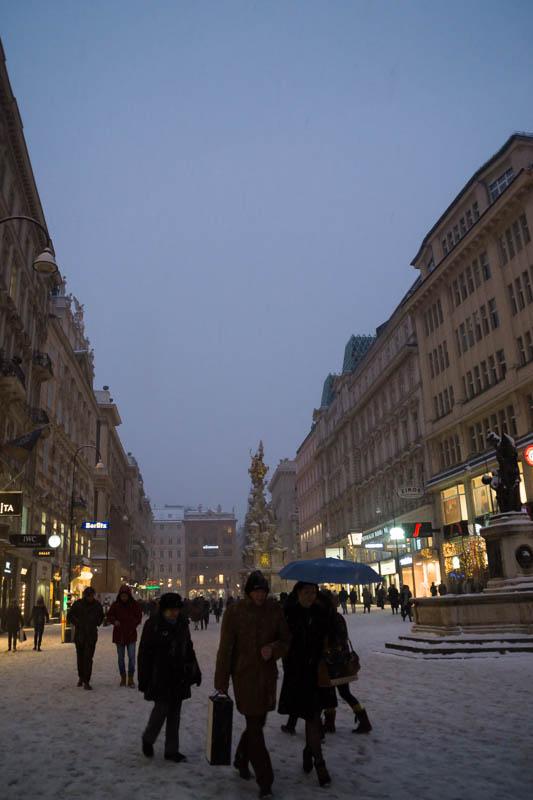 DSC03599 Winter Landscapes in Vienna