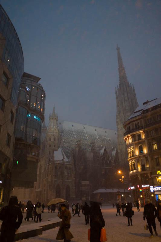 DSC03621 Winter Landscapes in Vienna