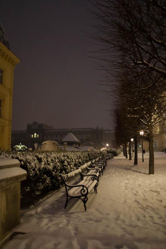 DSC03641 Winter Landscapes in Vienna