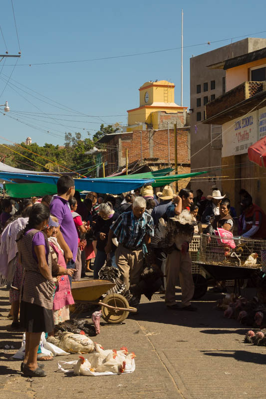 DSC03979 Zaachila Market