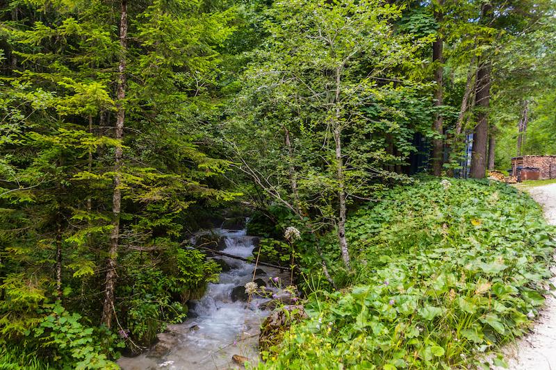 Nordic Walking in the Alps