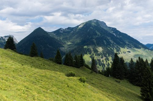 Nordic Walking in the Alps
